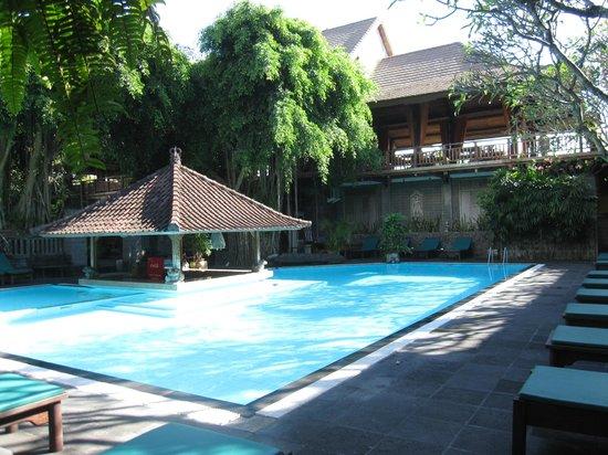 Hotel Puri Bambu: pool