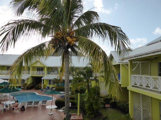 Bay Gardens Hotel: Bay Gardens