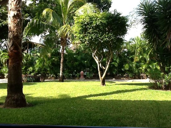 Iberostar Tucan Hotel: Lovely, lush grounds.