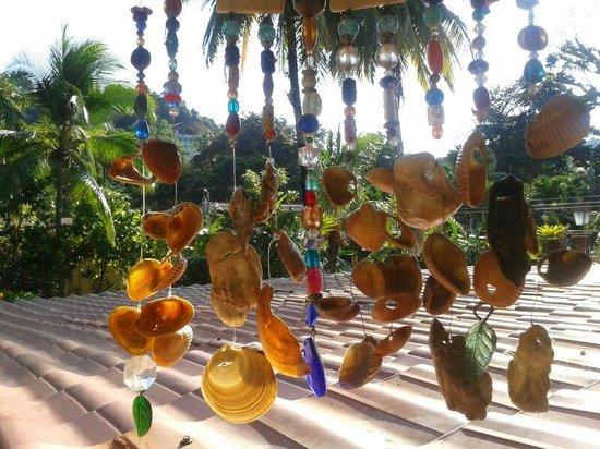 Hotel Vela Bar : Jardines