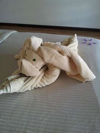Thaproban Pavilion Resort and Spa : our towels