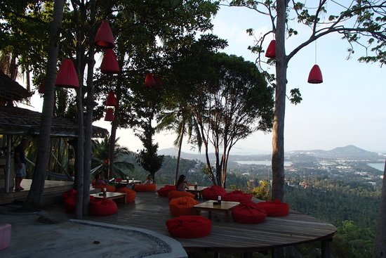 The Jungle Club Restaurant : From Here