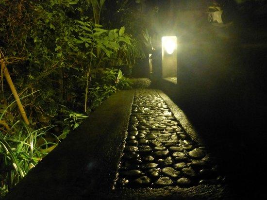 Geria Giri Shanti Bungalows: The walkway to bungalow #5