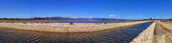 Parco Regionale Naturale Molentargius-Saline : Cielo di... Sardegna