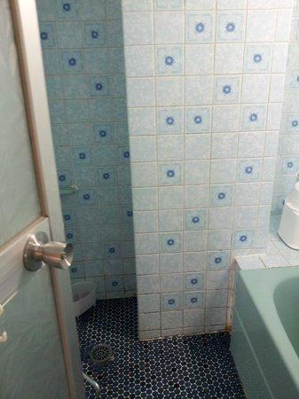 Sekitei: Dated shower