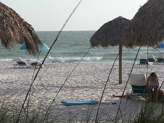 The Naples Beach Hotel & Golf Club : Beach at Hotel