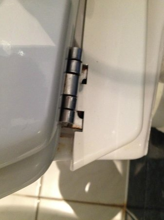 Hotel Le Pierre: WC