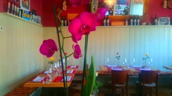 falco ristorantino