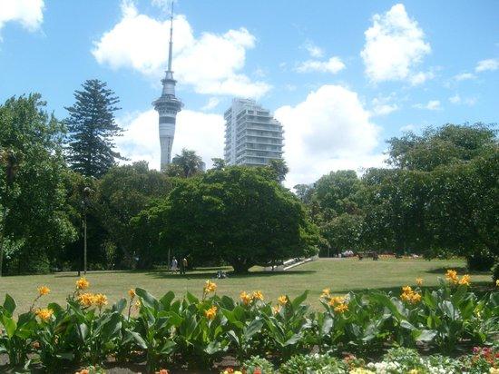 Albert Park: Auckland Turm und Park
