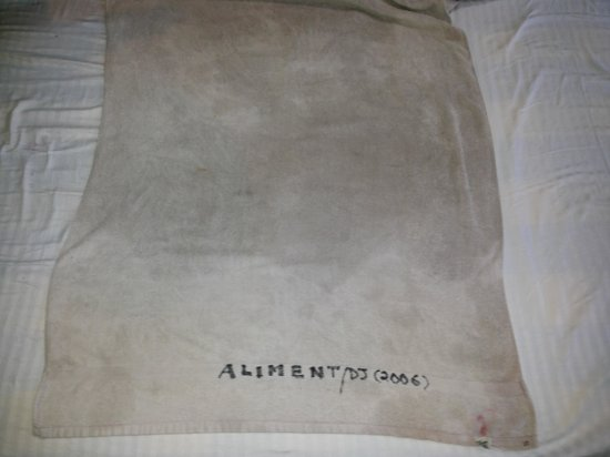 aliment hotel towel
