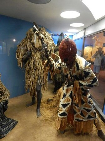 American Museum of Natural History : schaufenster
