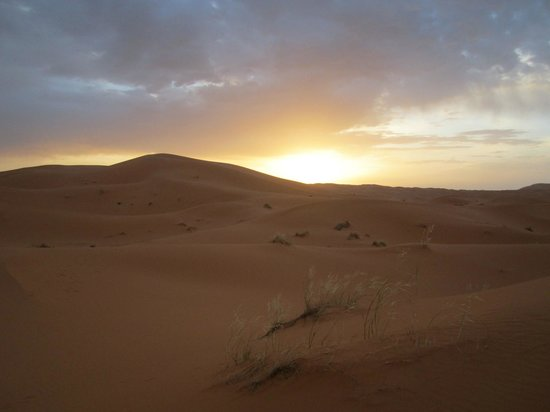 Camels House: lever  soleil