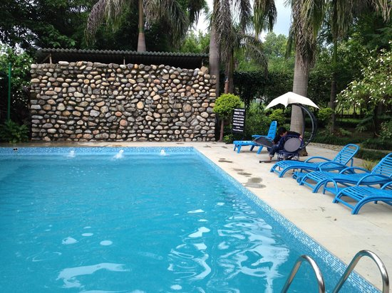 Vishranti - A Doon Valley Jungle Retreat: Nice Little Pool