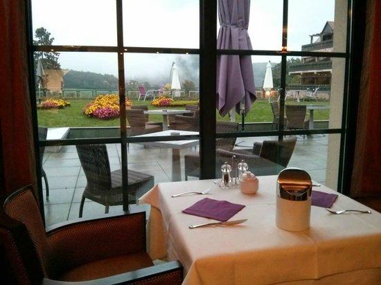 Les Violettes Hotel & Spa Alsace, BW PREMIER Collection: vue depuis le restaurant