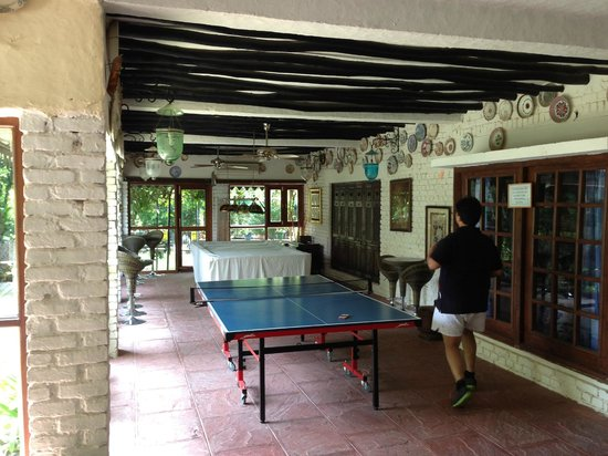 Vishranti - A Doon Valley Jungle Retreat: Billiards & TT