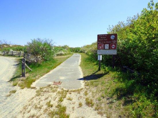 Head of the Meadow Trail