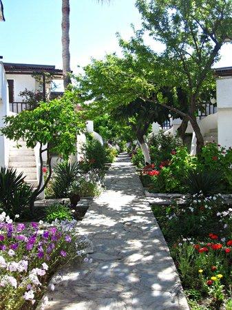 Hotel Letoon: The beautiful gardens around the hotel