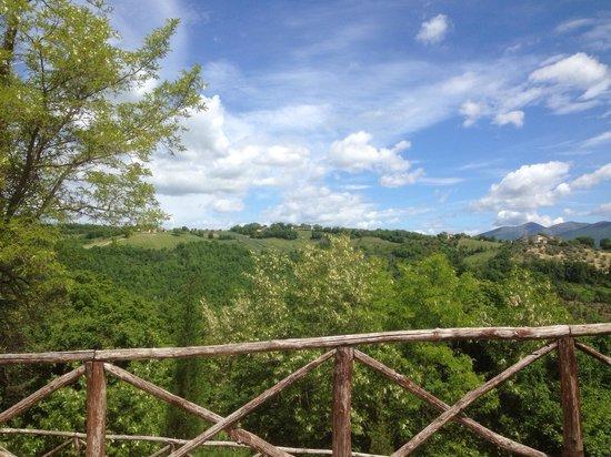 Agriturismo Borgo Castello Panicaglia : Panorama dal giardino
