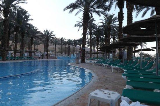 David Dead Sea Resort & Spa : Бассейн с пресной водой