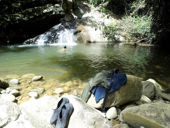 Orou Sapulot : swim in the jungle