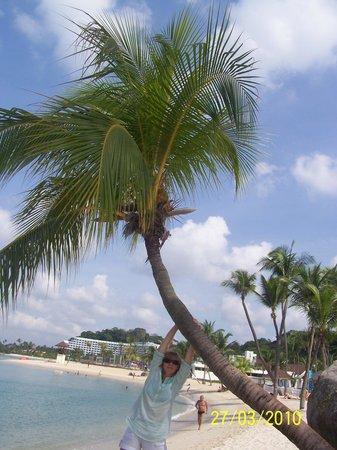 Siloso Beach Resort Sentosa: пляж рядом с отелем