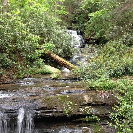Kingwood Country Club & Resort : Waterfall on property
