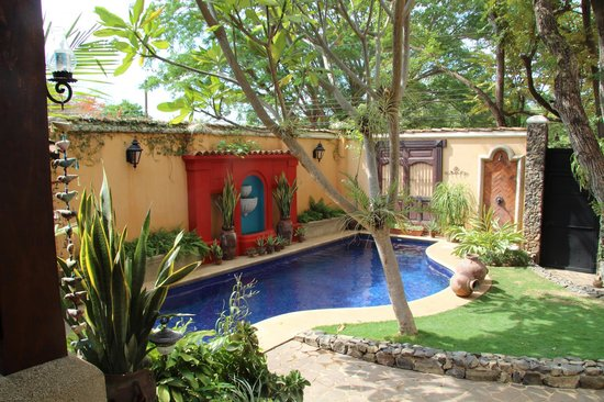 Villa Andalucia Bed and Breakfast : Pool