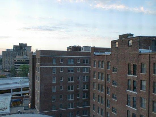 The Chase Park Plaza : 窓からの眺め(東側)