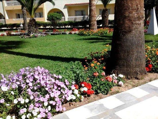 Hotel Abou Sofiane: Hotel Grounds
