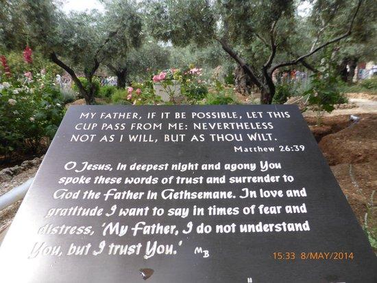 Garden of Gethsemane: Plaque in the garden