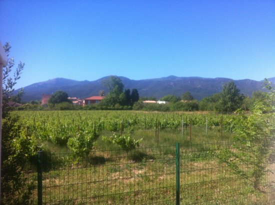 Camping La Chapelle: View from our deck