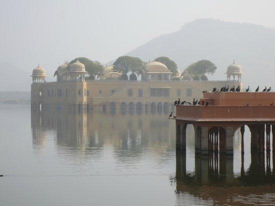 Jal Mahal: 湖に浮かぶように立ってます