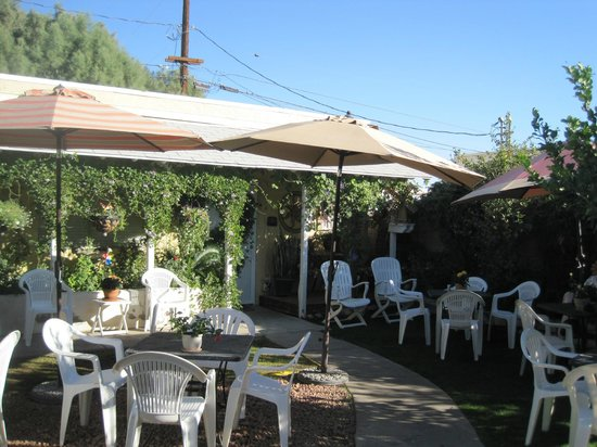 Windmill Market and Produce: The backyard - this place is truly an Oasis in the Desert