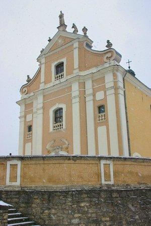 Тринитарский костел (Церковь Святого Иосафата)