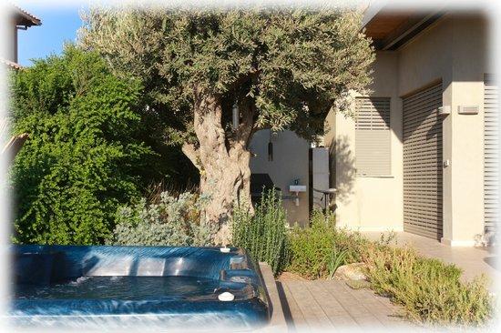 Gidona Israel  city photo : Play areas Picture of Nof LaGilboa, Gidona TripAdvisor