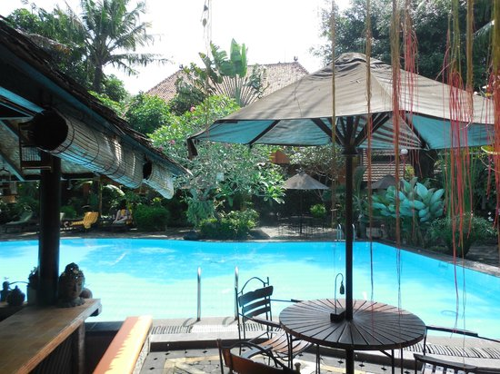 Dusun Jogja Village Inn: Der tolle Pool