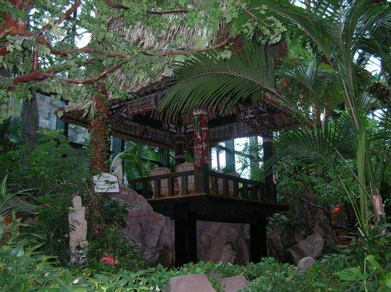 Lotte Hotel Busan: Зимний сад