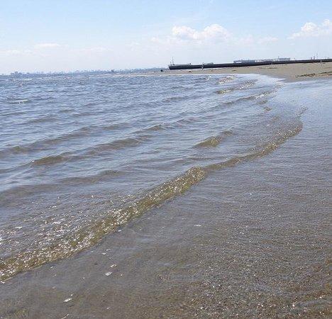 Makuhari Kaihin Park: キレイな浜辺