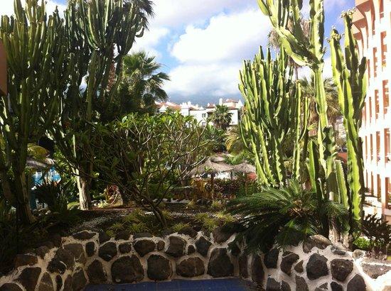 Hotel Puerto Palace: un tout petit aperçu du beau jardin