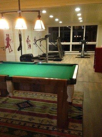 Boutique Hotel Varanda das Bromelias: Gym and games