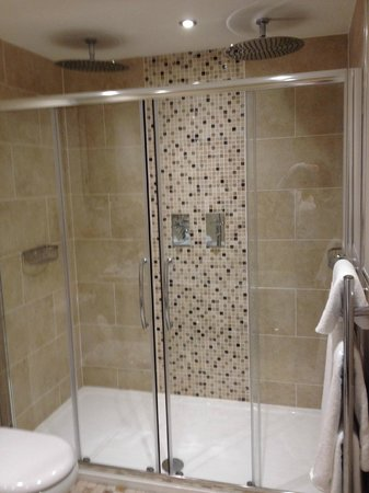 Emlyn Hotel: Double shower with waterfall shower heads