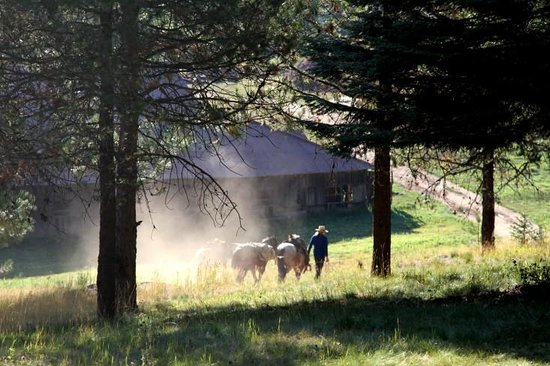 Minam River Lodge: Minam Lodge Grounds - Stables