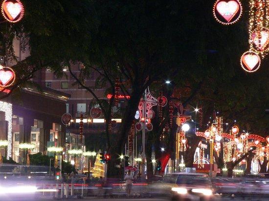 Orchard Grand Court: オーチャード通りのクリスマス電飾(2012年)