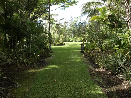 Hale Moana Bed & Breakfast : Surrounding private gardens