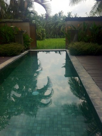 The Chedi Club Tanah Gajah, Ubud, Bali – a GHM hotel: Pool in villa with gates open to fields.