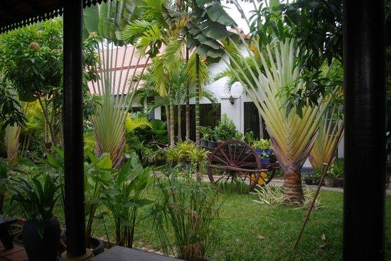 Lucky Angkor Hotel: un des apaisants espaces verts