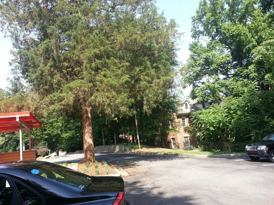 Red Roof Plus+ Atlanta - Buckhead: Beautiful green space all around the building, yet very convenient to businesses.