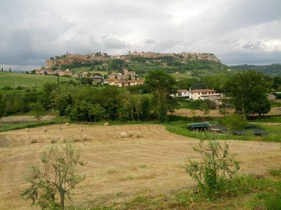 Antica Olivaia: Umbrian View