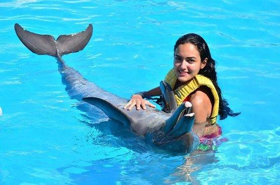 Dolphinaris Cancun: el bebé
