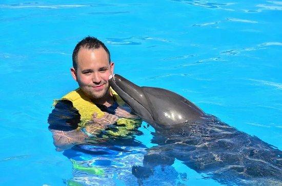 Dolphinaris Cancun: kiss